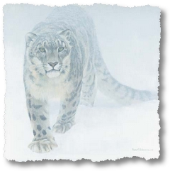bateman-out-of-the-white-snow-leopard